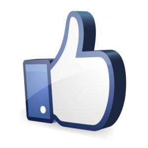 Facebooklike -178742843 (1)