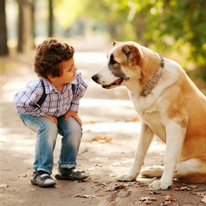 kid and pet 178496846