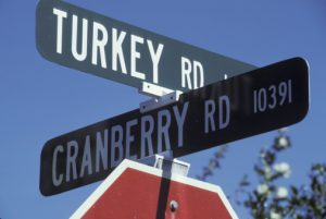 Intersection of Turkey and Cranberry
