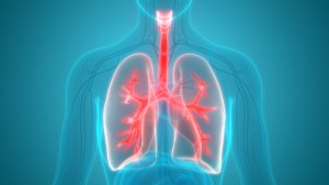 Jamaica Hospital's Division of Pulmonary Medicine offers a wide variety of services to help diagnose and treat patients with lung disease.