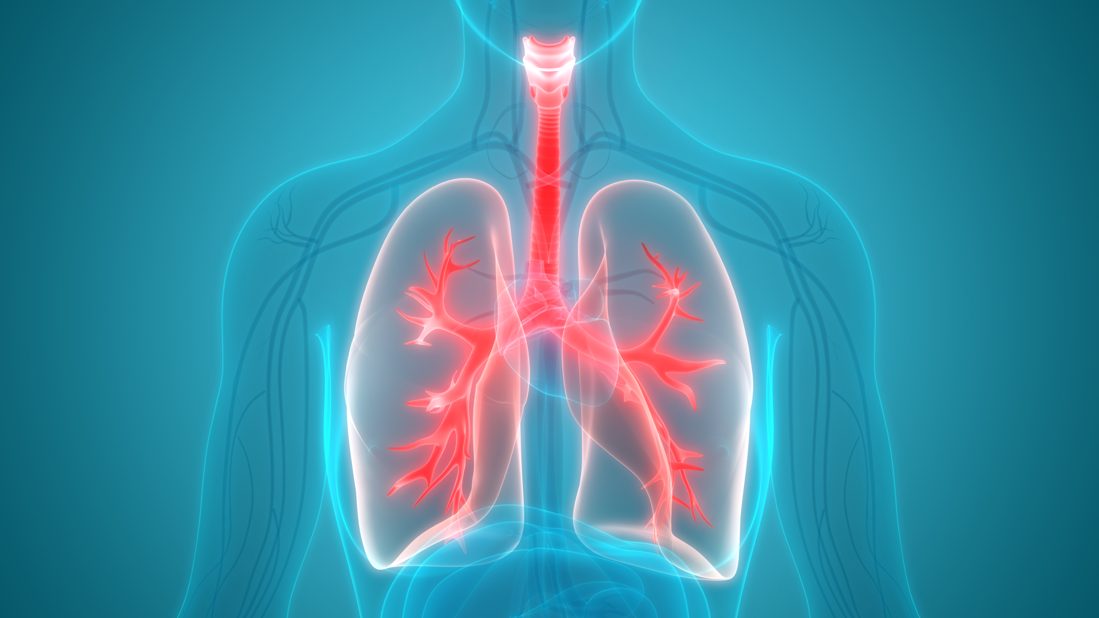 Pulmonary Medicine | Providing Care For Lung Disease